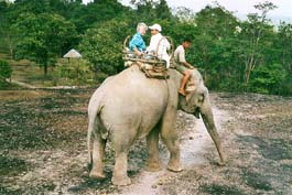 Elephant_Ride_Atiane.jpg